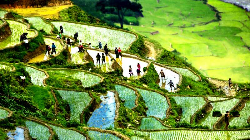 Mountain And People In Bac Ha Tour (3 Days - RT302)